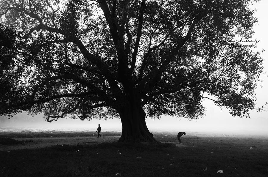 Fotograf-Kanishka-Mukerdzhi_2