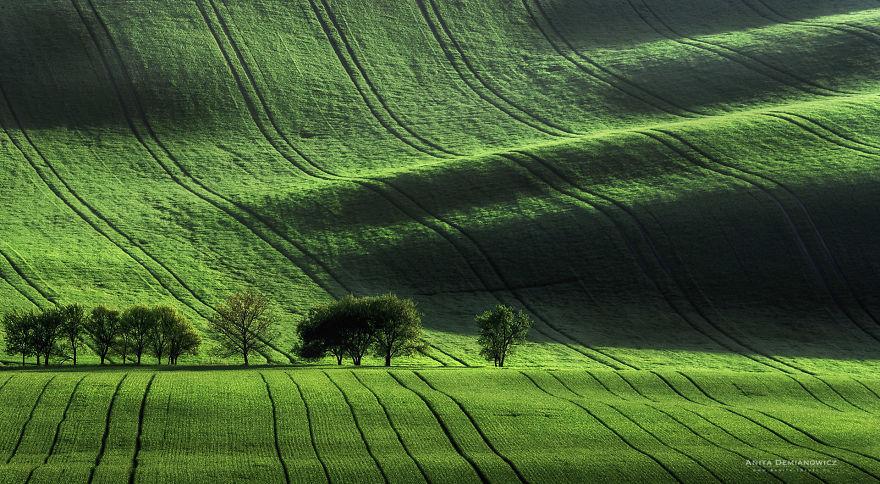 South-Moravian-Region-26-1