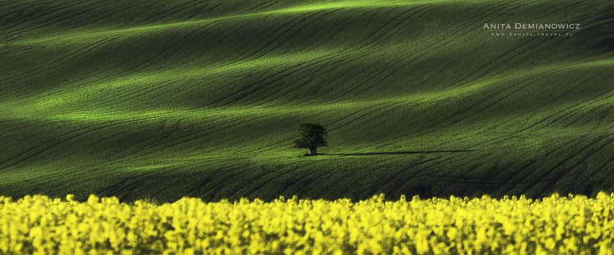 South-Moravian-Region-26-11