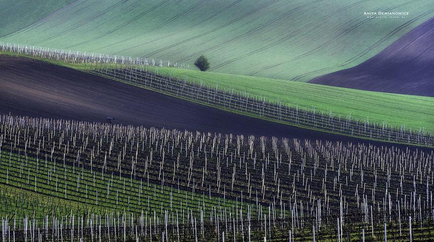 South-Moravian-Region-26-4