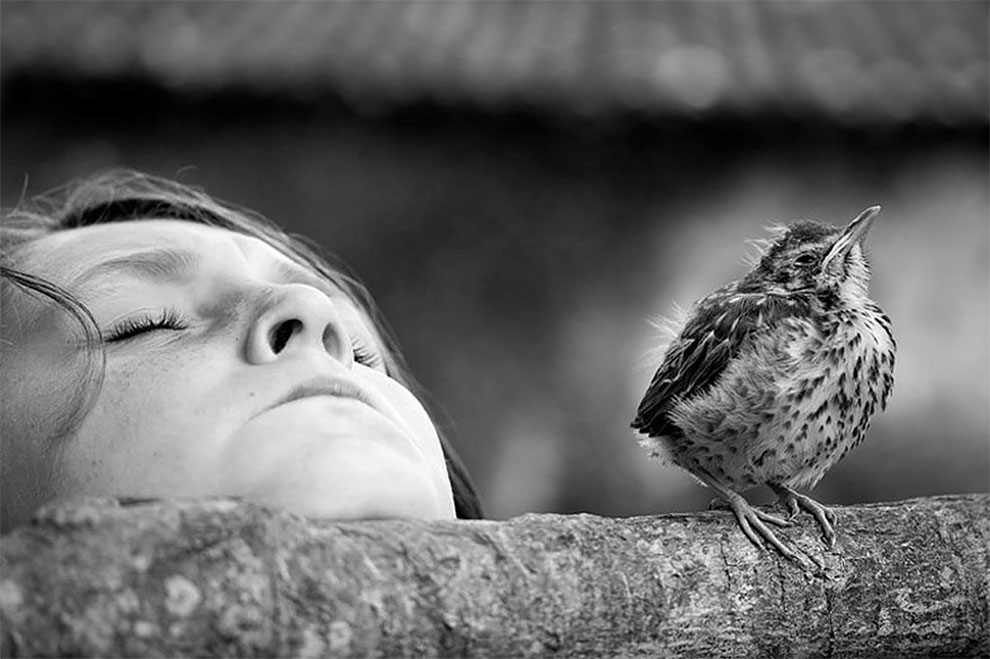 fotograf-Alen-Lebual_23