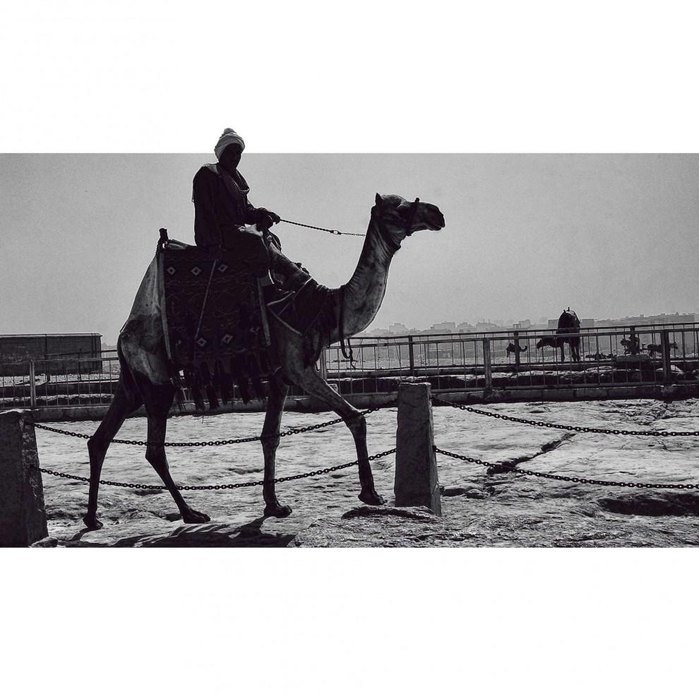 egipet-14-8-990x990
