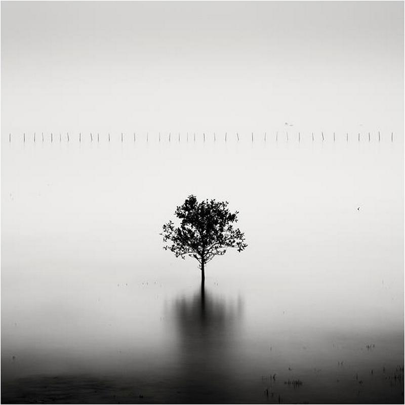 fotograf-Dzhozef-Hoflener_20