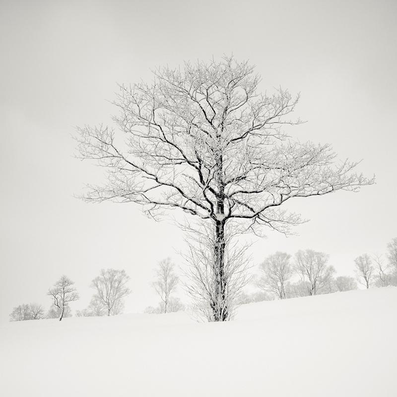fotograf-Dzhozef-Hoflener_22