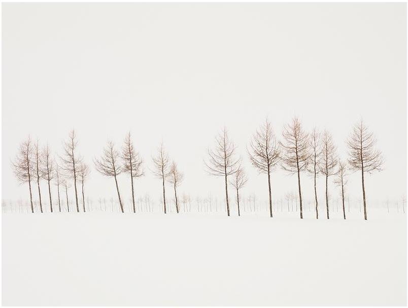 fotograf-Dzhozef-Hoflener_8