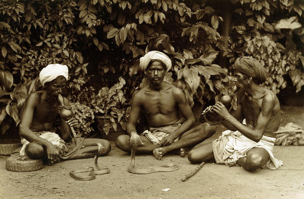 istoricheskie-fotografii-Shri-Lanki_14