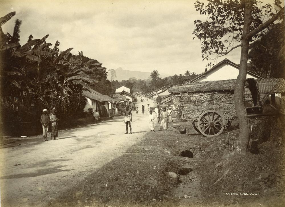 istoricheskie-fotografii-Shri-Lanki_2