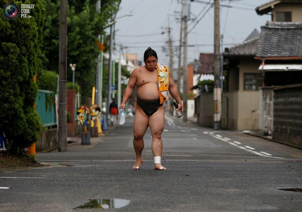 sumo-30-16