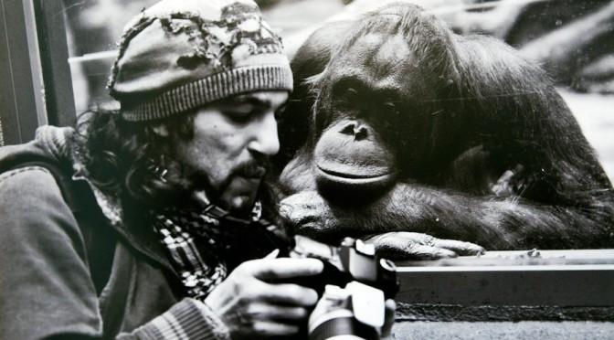 Последние события в мире в фотографиях