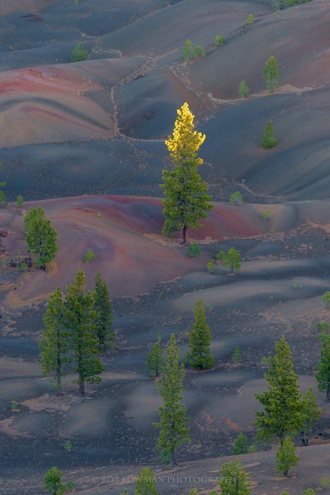 Lassen-Volcanic-4-12-661x990