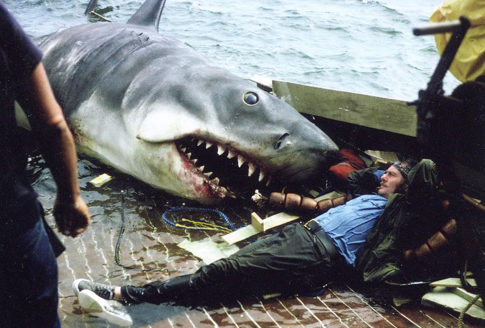 Австралия внедряет систему обнаружения акул с помощью дронов