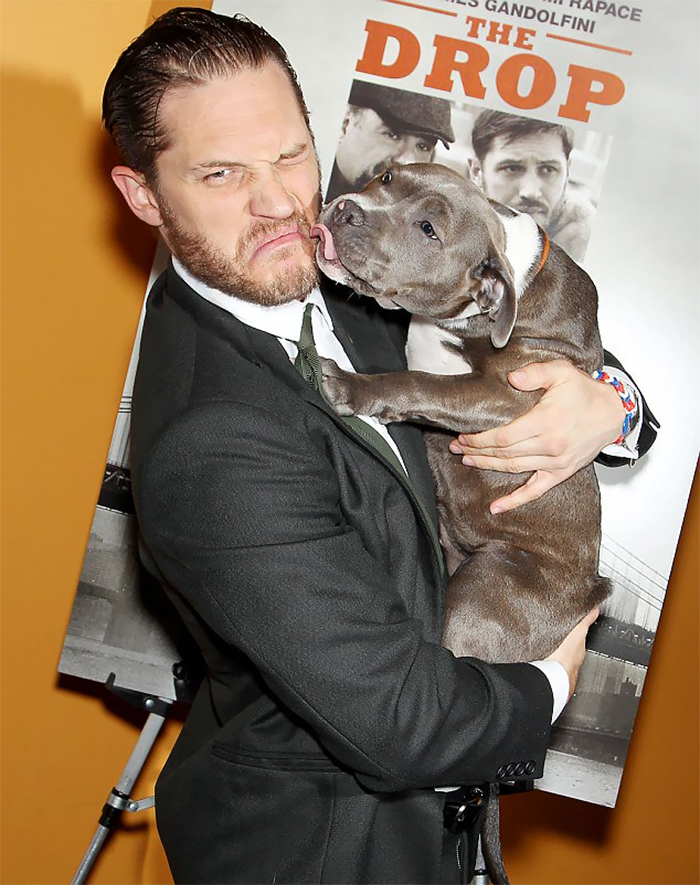 love-for-dogs-tom-hardy-25-59bf84c333bbe__700