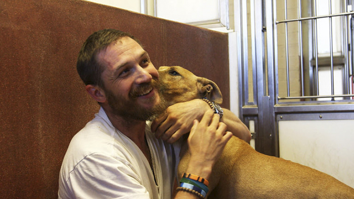 love-for-dogs-tom-hardy-59bf750877631__700