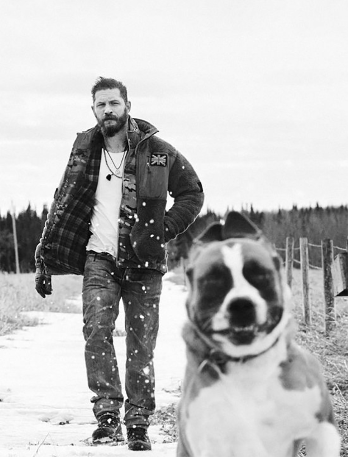 love-for-dogs-tom-hardy-59bf757e28037__700