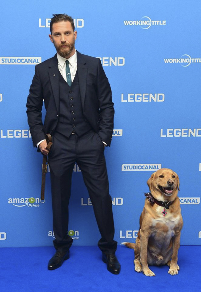 love-for-dogs-tom-hardy-59bf774005689__700