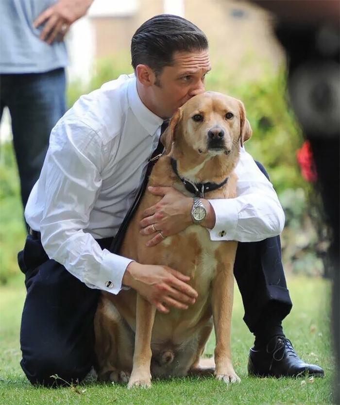love-for-dogs-tom-hardy-59bf7825ca31a__700