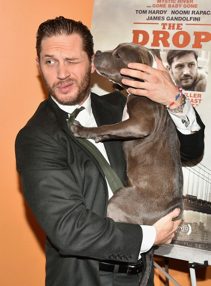 love-for-dogs-tom-hardy-59bf7ec159b3e__700