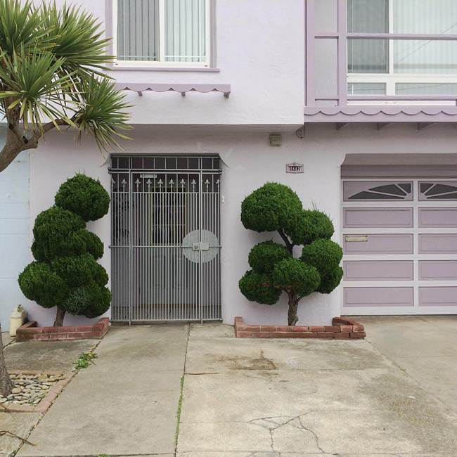 topiary-trees-of-san-francisco-006