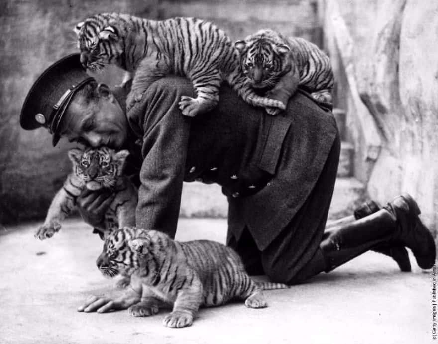 Винтажные фотографии, показывающие, что особая связь между людьми и животными была всегда