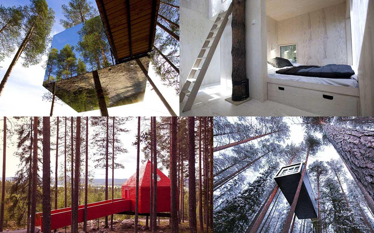 shvetsiya-neobychnie-oteli-treehotel