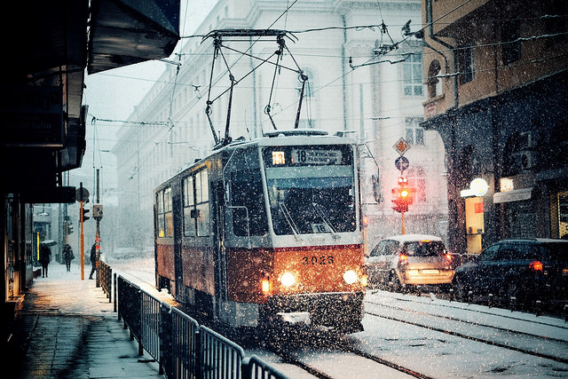 Неделя зимы уже прошла: подборка самых красивых зимних фотографий