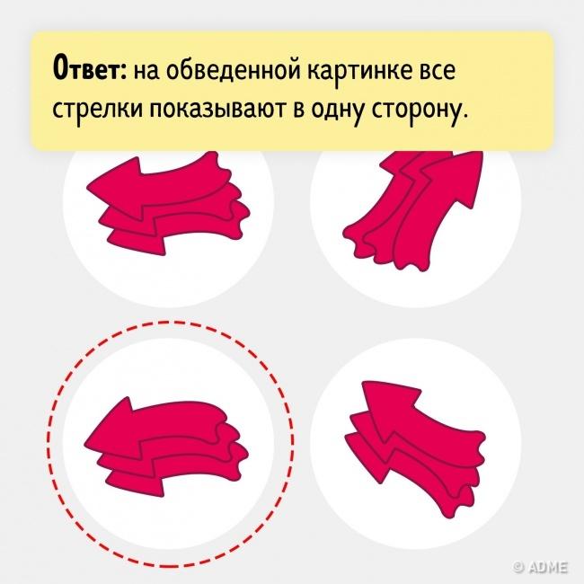 11425665-19433160-6a-0-1518441511-1518441519-1500-1-1518441519-650-e821ae789a-1518689835