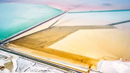 Жизнь - соль: подборка редких фото природы