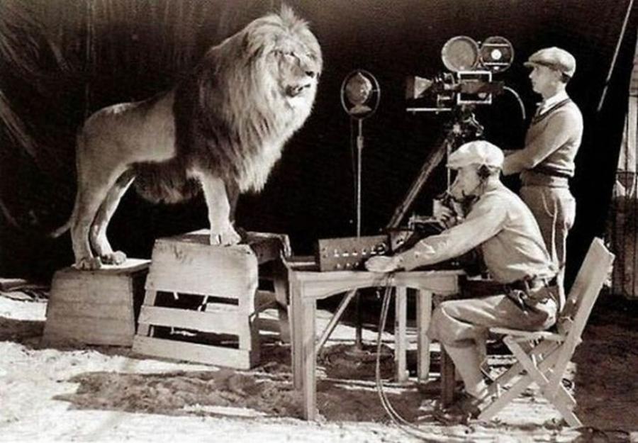 История льва компании Metro-Goldwyn-Mayer