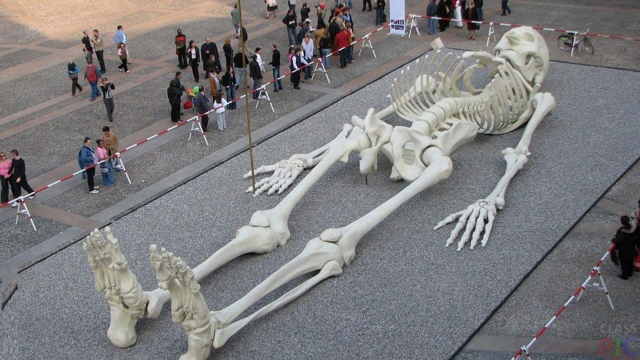 Кто был до нас: по всему миру найдены останки настоящих великанов