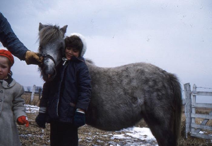 Gypsiesinthe1960s-11