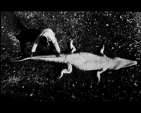 izobrazheniya-NASA_58