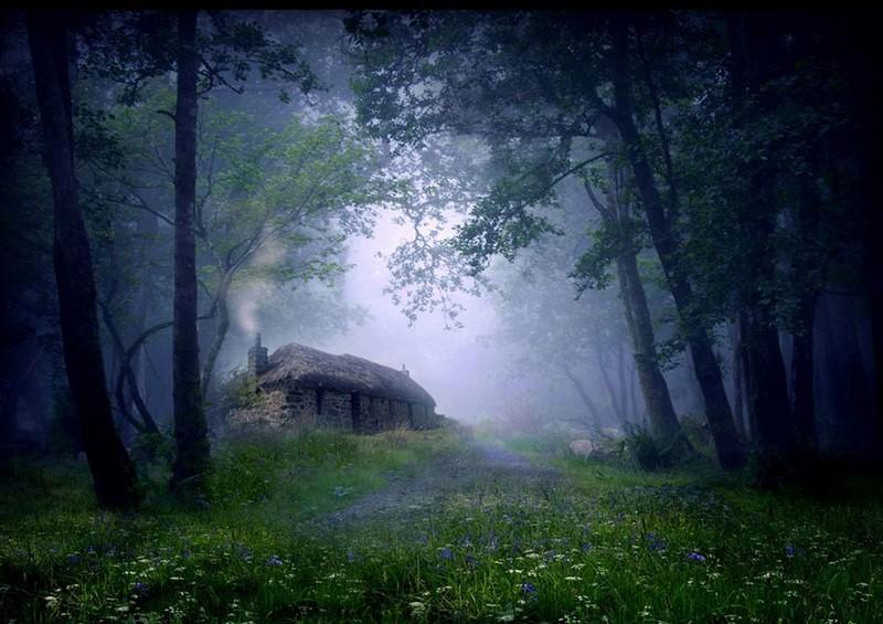 lonelyhouses01