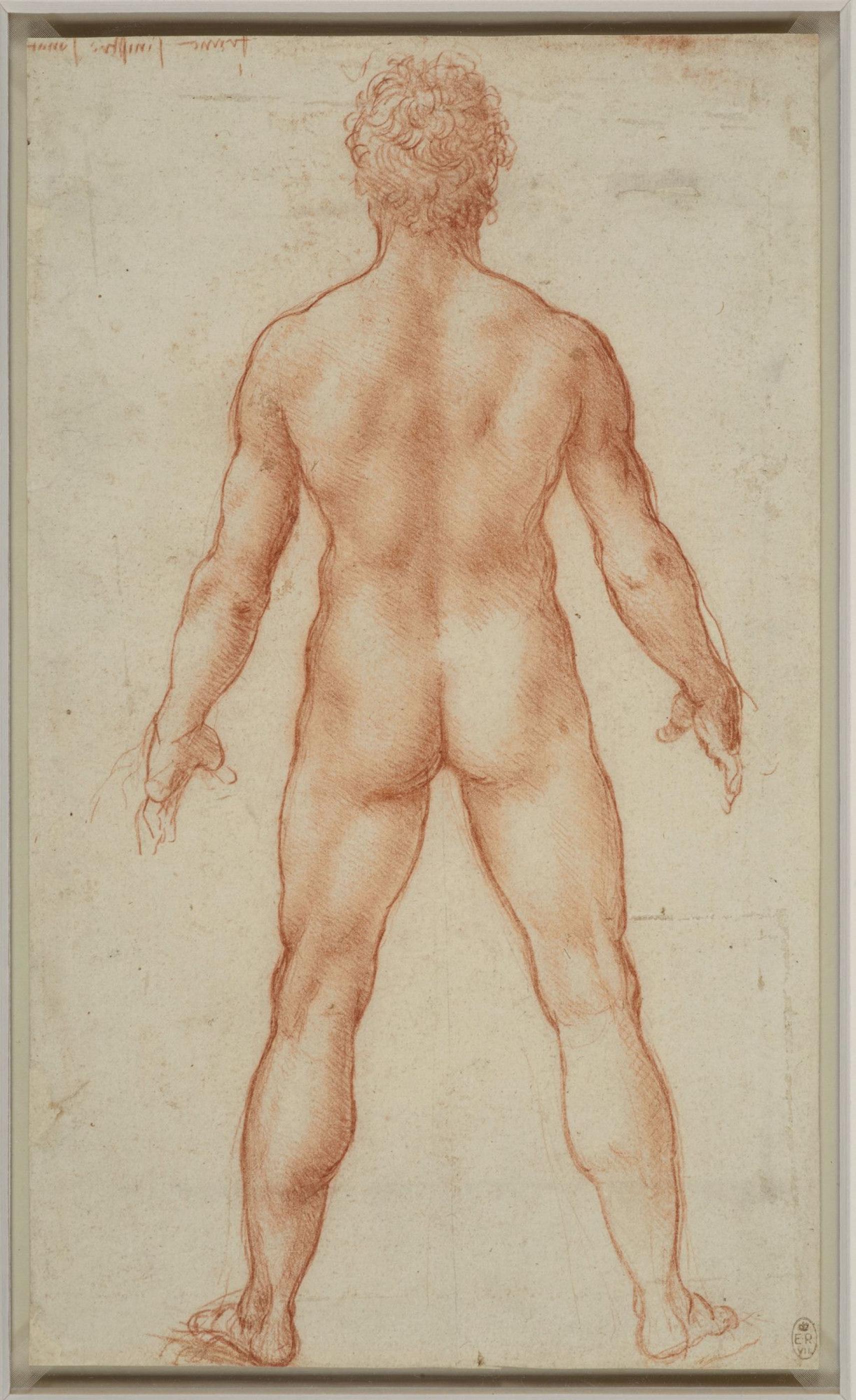 Рисунок стоящего обнаженного мужчины, Леонардо да Винчи