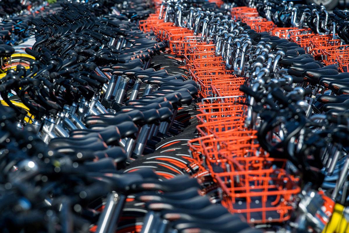 Мир велосипедов: до чего довела популярность чистого транспорта