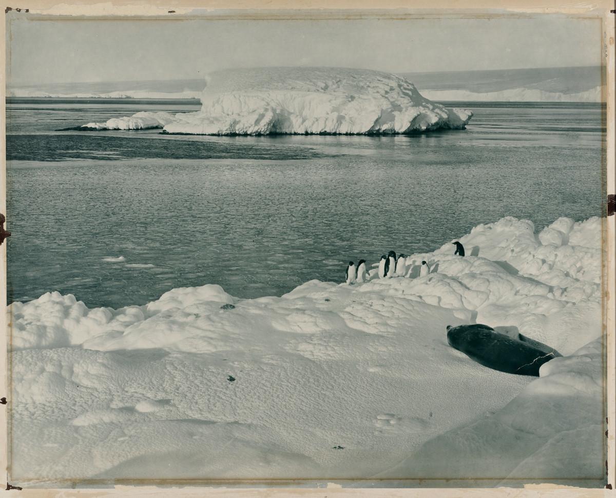 Antarctica_1911_fotograf_Frank_Hurley_25