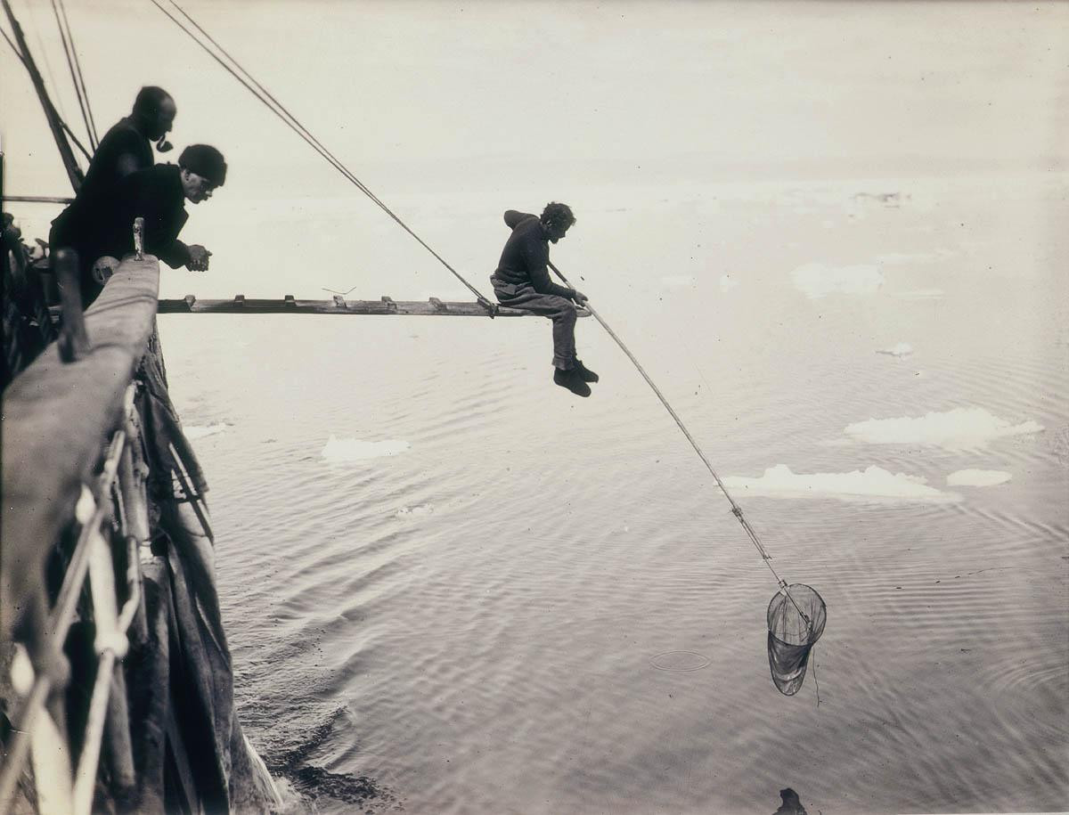 Первые снимки Антарктиды: работы Фрэнка Хёрли (1911-1914)