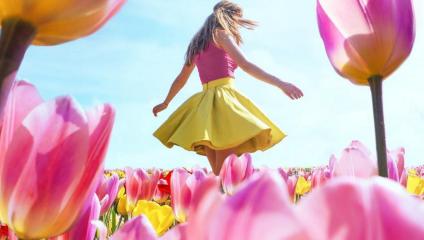 Фотографии из Нидерландов в сезон цветения : 7 миллионов тюльпанов