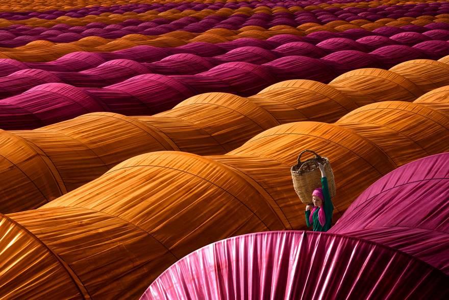 Клубничные теплицы, Турция