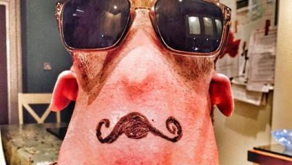 #бородаснизу – как отрываются бородачи