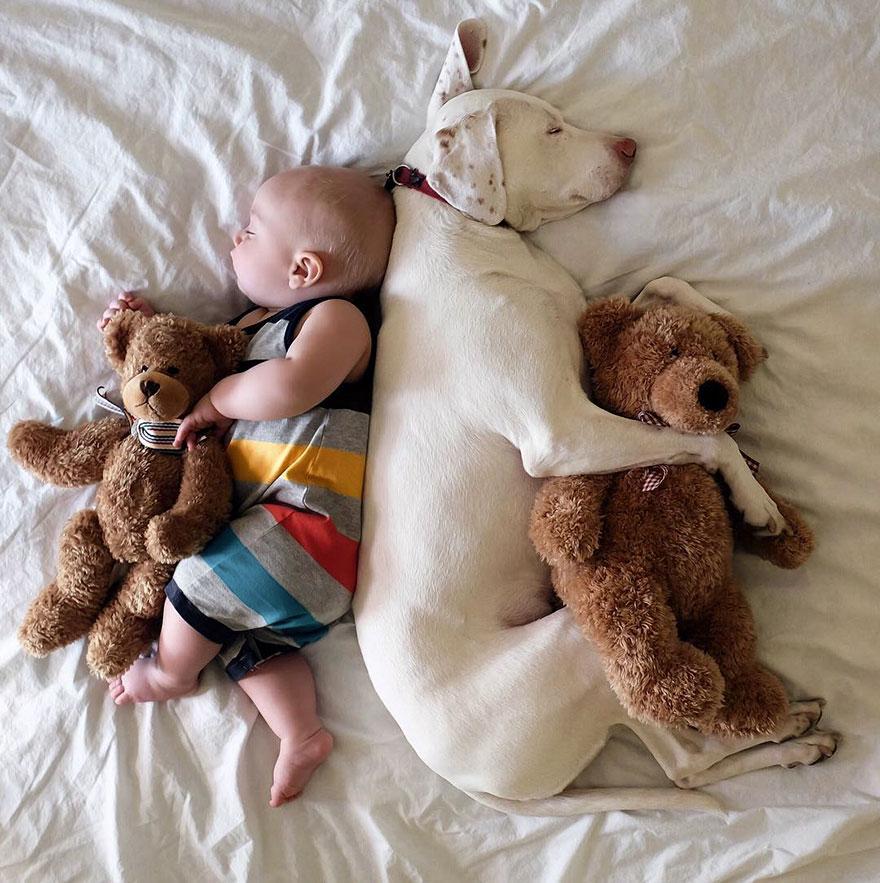 Необычная дружба в фото: годовалый малыш и пес с нелегким прошлым