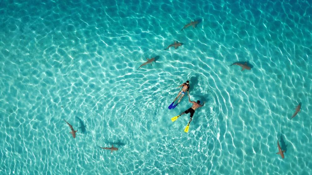 Фотографии с дронов: лучшее со всего мира