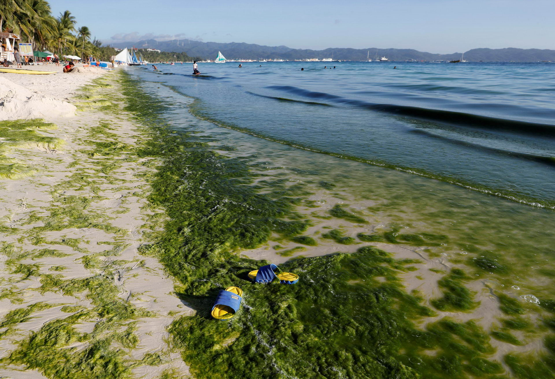 A view of a seashore partly covered with moss is seen at Boracay in the Philippines