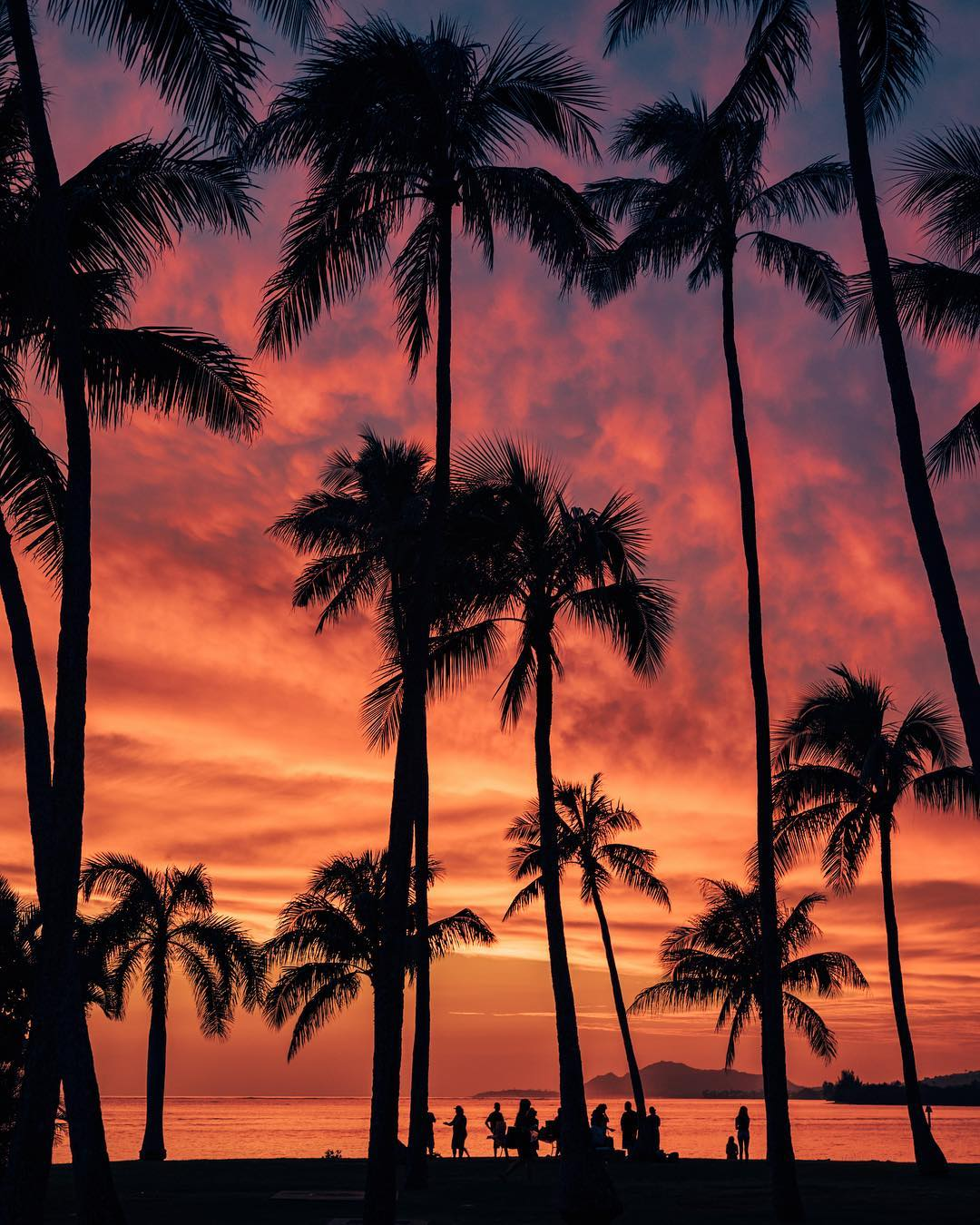 hawaii_on_the_pictures_of_vincent_lim_002631_001