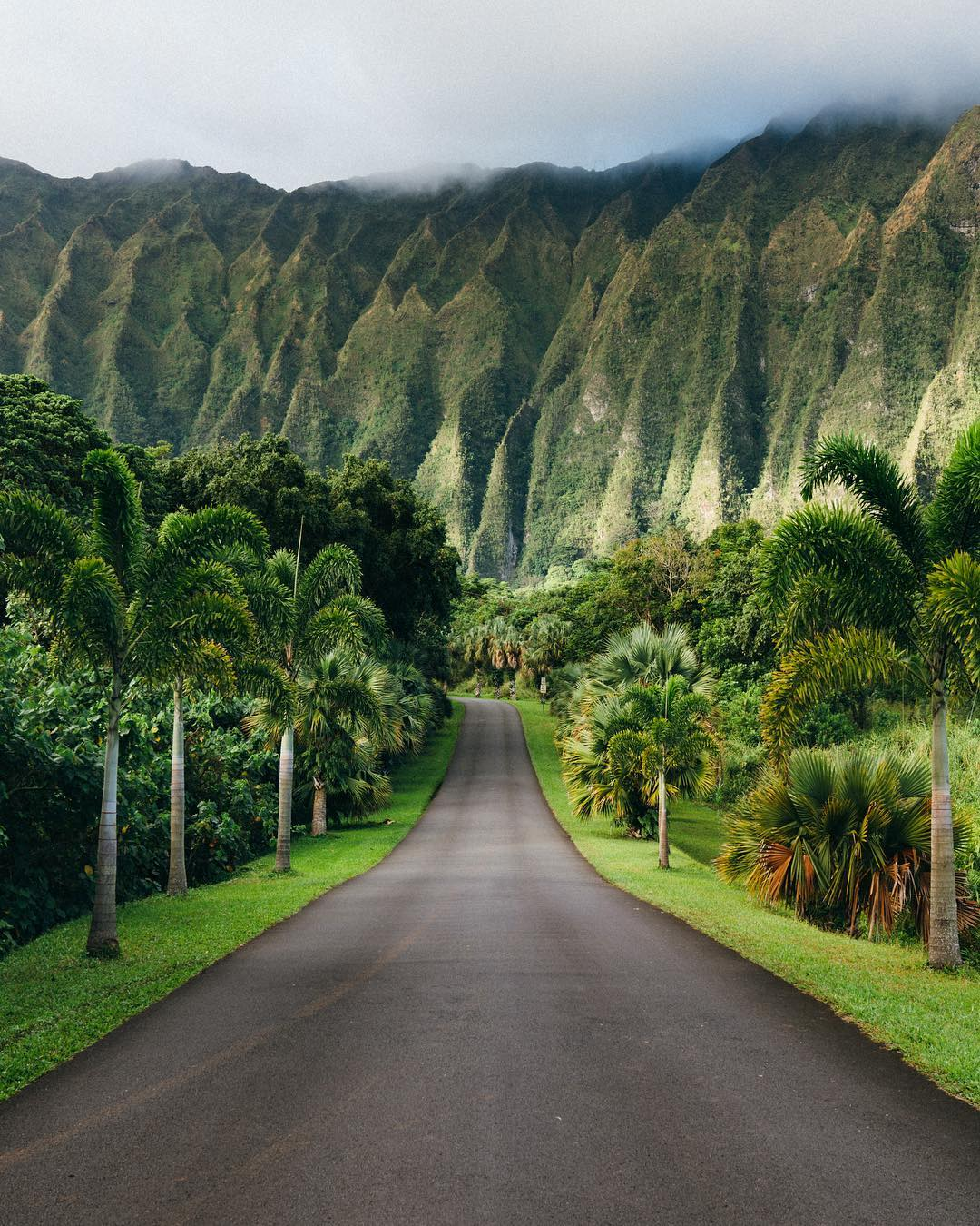 hawaii_on_the_pictures_of_vincent_lim_002631_010