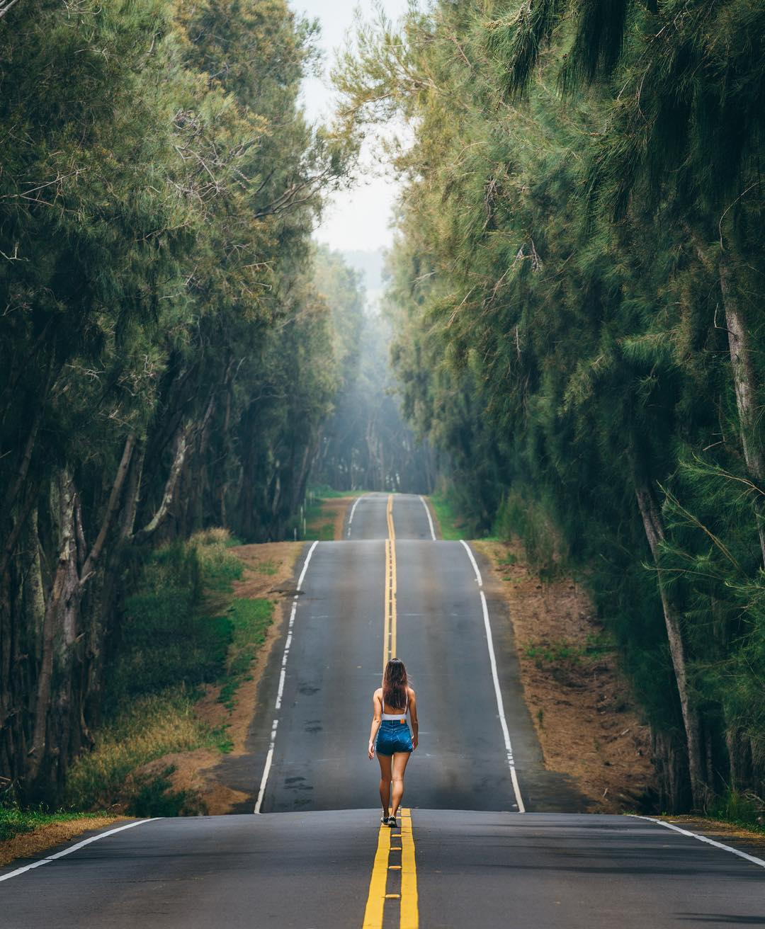 hawaii_on_the_pictures_of_vincent_lim_002631_019