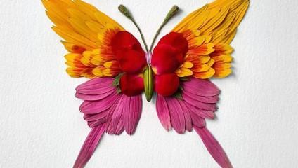 Красота в простом: насекомые из растений