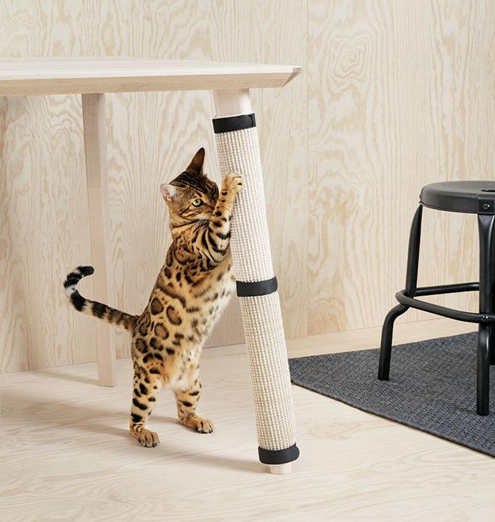 Новинка от IKEA: мебель для собак и кошек