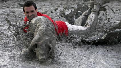 Развлечения в Канаде: свинский фестиваль