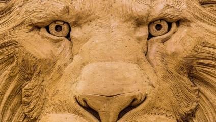 Произведения искусства из песка: фотоотчет с фестиваля в Бельгии