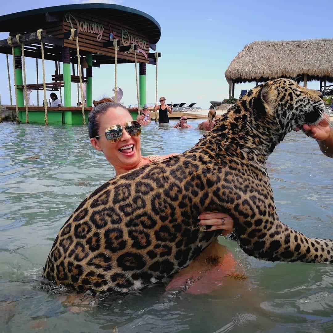 Отдых и опасность: курорт с дикими животными